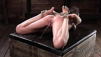 Brunette in hogtie made to squirt